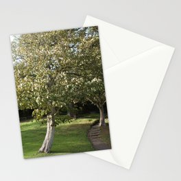 Cornwall Park Tree Photo 1782 Stationery Cards