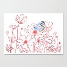 Cosmos and Butterfly Canvas Print