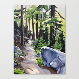 Stay on the Path Canvas Print