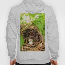Bird's Nest Hoody