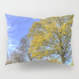 English Summertime Farm Pillow Sham