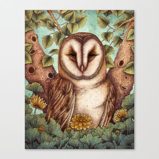 Spring Barn Owl Canvas Print