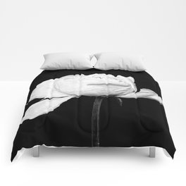 White Peony Black Background Comforters