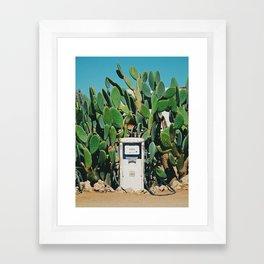 Cactus IV Framed Art Print