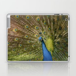 Peacock. Laptop & iPad Skin