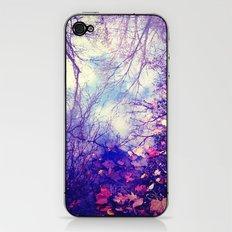 Winter Reflection iPhone & iPod Skin