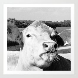 Cowface, Black and White Art Print