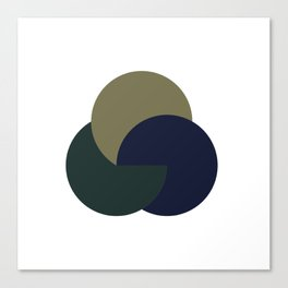 #255 Yin, yang & yom – Geometry Daily Canvas Print