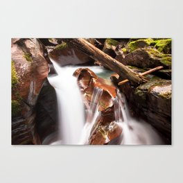 Avalanche Gorge Waterfall Canvas Print