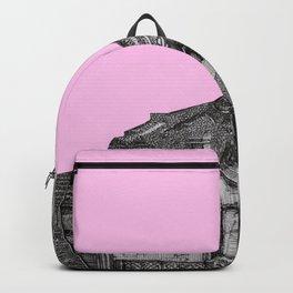 pink glitch Backpack