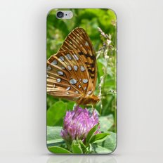 Great Spangled Fritillary Butterfly 2 iPhone & iPod Skin