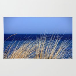 Dried long grass with blue sea behind and blue sky Rug