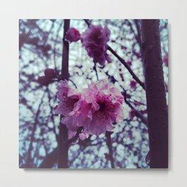 Spring into my Life. Metal Print