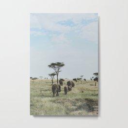 Serengeti National Park, Tanzania IX Metal Print