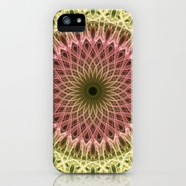 Detailed mandala in gold and red ones iPhone Case