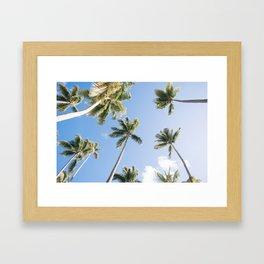 Below the Palms Framed Art Print