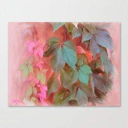 Napa Ivy Canvas Print