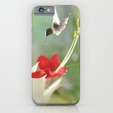 Hummingbird in Flight Slim Case iPhone 6s