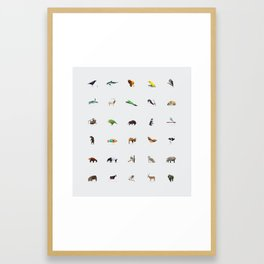 In Pieces – Species Collection Pure Framed Art Print