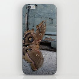 Moth Mother iPhone Skin