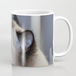 Ragdoll Cat Coffee Mug