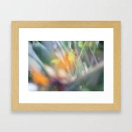 Paradise 1 Framed Art Print