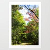September Summer Art Print