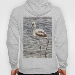 Find Your Footing And Stand Firm Watercolor Hoody