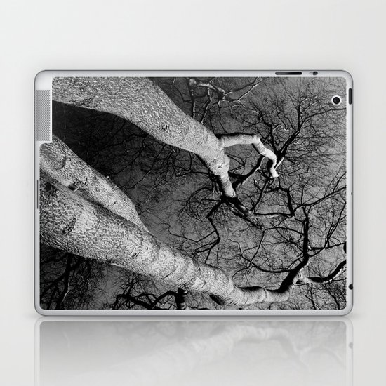 Monochrome Trees Laptop & iPad Skin