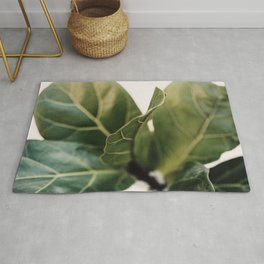 Thin Lines Rug