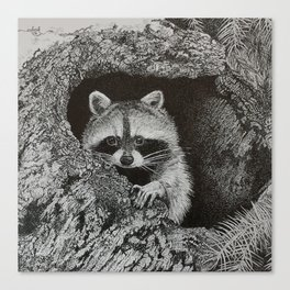 lil bandit Canvas Print