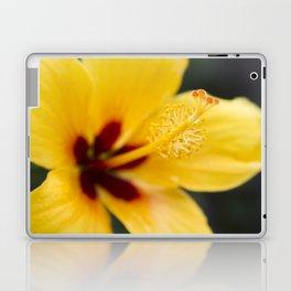Boreas Tropical Hibiscus Lemon Drop Laptop & iPad Skin