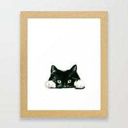 Black cat watching at you Framed Art Print