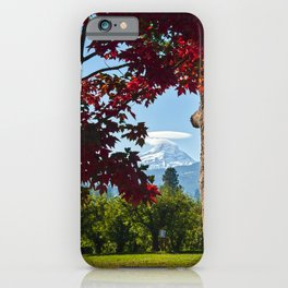 Autumn Colors Hood River Valley iPhone Case