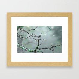 Facade Framed Art Print