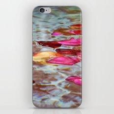 Whishing Fountain iPhone & iPod Skin