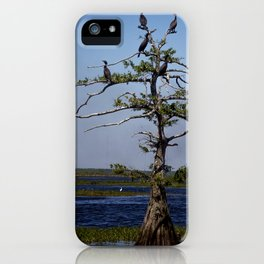 Cormorant Tree iPhone Case