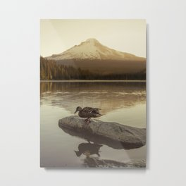 The Oregon Duck Metal Print