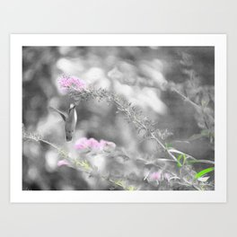 Digita Hummingbird painting. Art Print