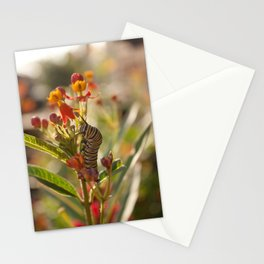 Suppertime Stationery Cards