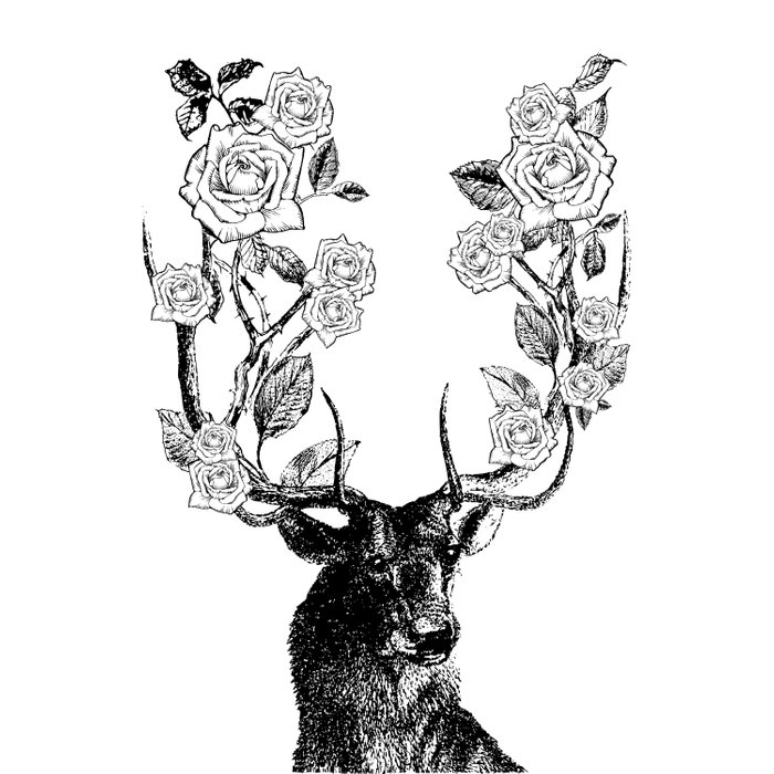 The Stag and Roses | Black and White Duvet Cover