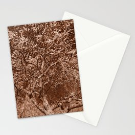Wooden Cherry Blossom Impressions Stationery Cards