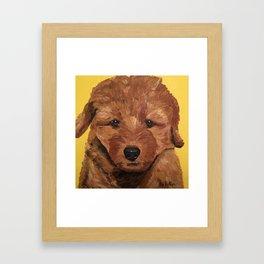 Golden Doodle Puppy Art, Cute Puppy Art, Golden-Doodle Puppy Framed Art Print