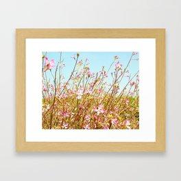 Fort Brag Flowers II Framed Art Print