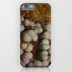 Cactus Stones iPhone 6s Slim Case