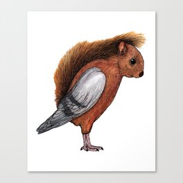 Squigeon Canvas Print