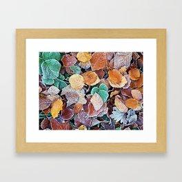 Icy Autumn Leaves Framed Art Print