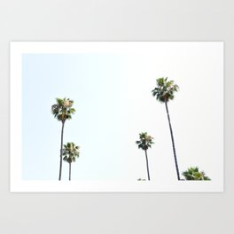 la palms Art Print