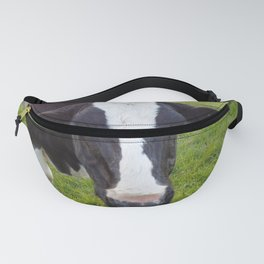 A cow staring at you Fanny Pack