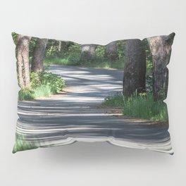 Itasca's Winding Road Pillow Sham
